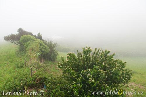 Cestopis z Azory a Faialská apokalypsa