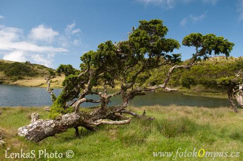 Pico Lagoa do Capitão