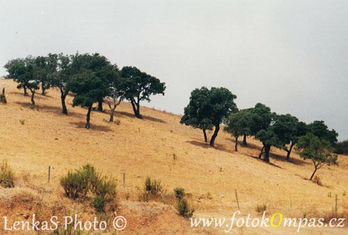 Portugalsko zajímavosti a impresionistická krajina